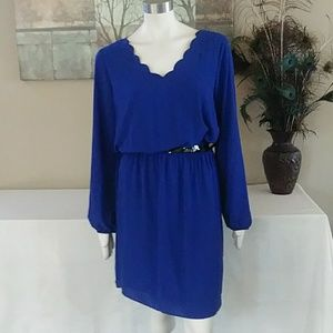 NWOT Sz. 16 Dress with Scalloped Neckline fully li